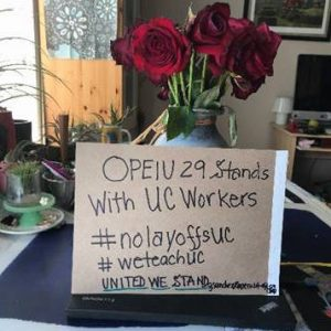 OPEIU 29 stands with UC workers